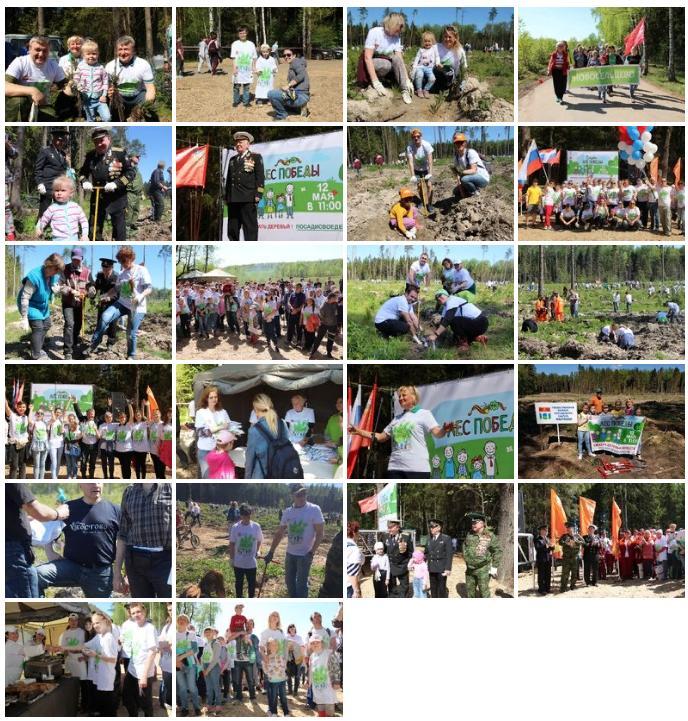 12 мая в городском округе Мытищи прошла областная экологическая акция Лес Победы